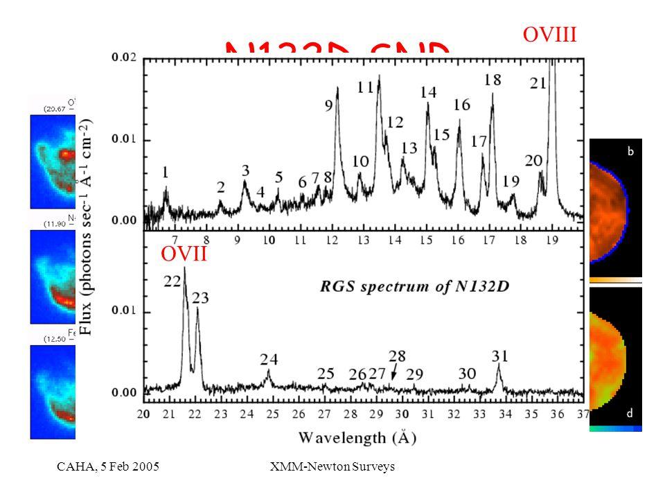 CAHA, 5 Feb 2005XMM-Newton Surveys N132D SNR Fe line OVII OVIII