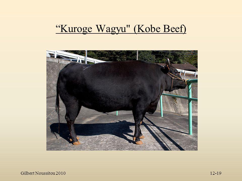 """Gilbert Noussitou 201012-19 """"Kuroge Wagyu"""