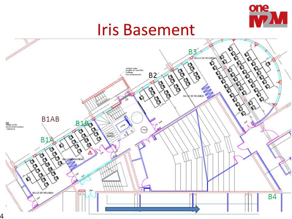 Iris Basement 4 B4 B1AB B1B B1A B3 B2