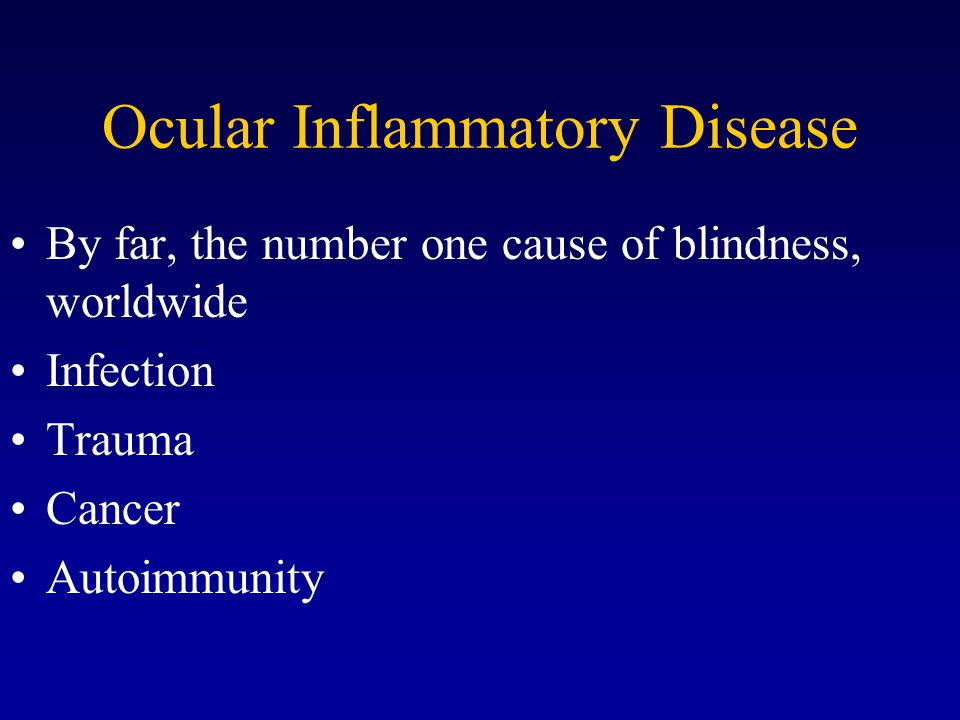 Ocular Inflammatory Disease By far, the number one cause of blindness, worldwide Infection Trauma Cancer Autoimmunity