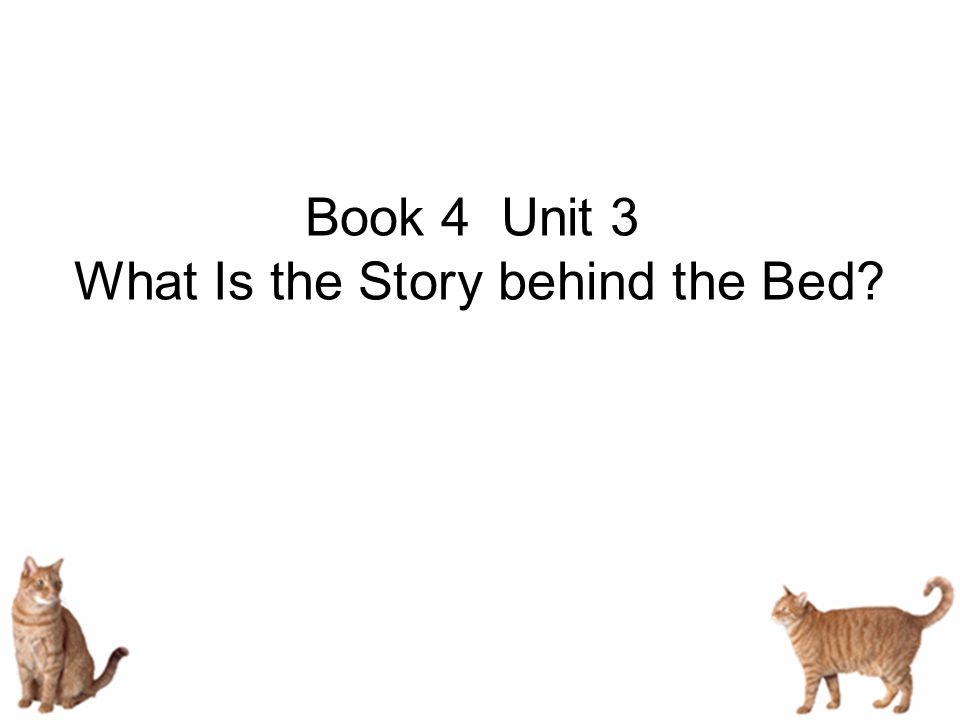Book 4 Unit 3 What Is the Story behind the Bed