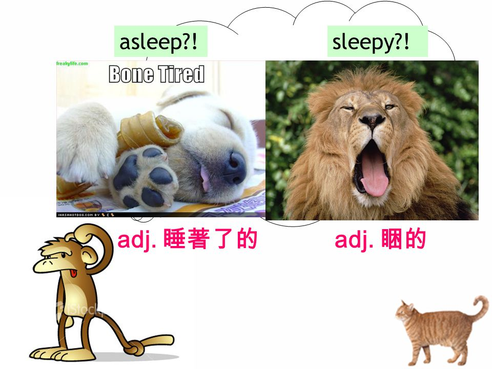 asleep !sleepy ! adj. 睡著了的 adj. 睏的