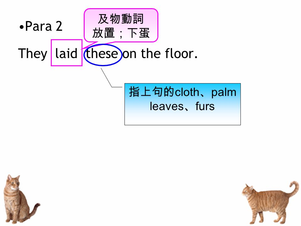 Para 2 They laid these on the floor. 及物動詞 放置;下蛋 指上句的 cloth 、 palm leaves 、 furs