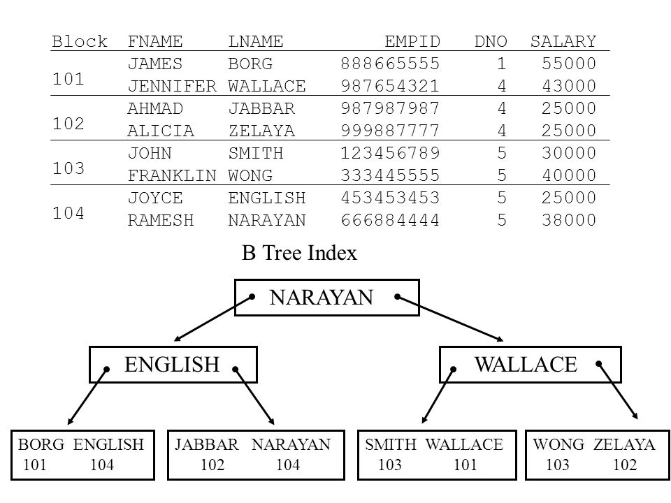 B Tree Index NARAYAN ENGLISH WALLACE BORG ENGLISH 101 104 JABBAR NARAYAN 102 104 SMITH WALLACE 103 101 WONG ZELAYA 103 102 FNAME LNAME EMPID DNO SALARY JAMES BORG 888665555 1 55000 JENNIFER WALLACE 987654321 4 43000 AHMAD JABBAR 987987987 4 25000 ALICIA ZELAYA 999887777 4 25000 JOHN SMITH 123456789 5 30000 FRANKLIN WONG 333445555 5 40000 JOYCE ENGLISH 453453453 5 25000 RAMESH NARAYAN 666884444 5 38000 Block 101 102 103 104