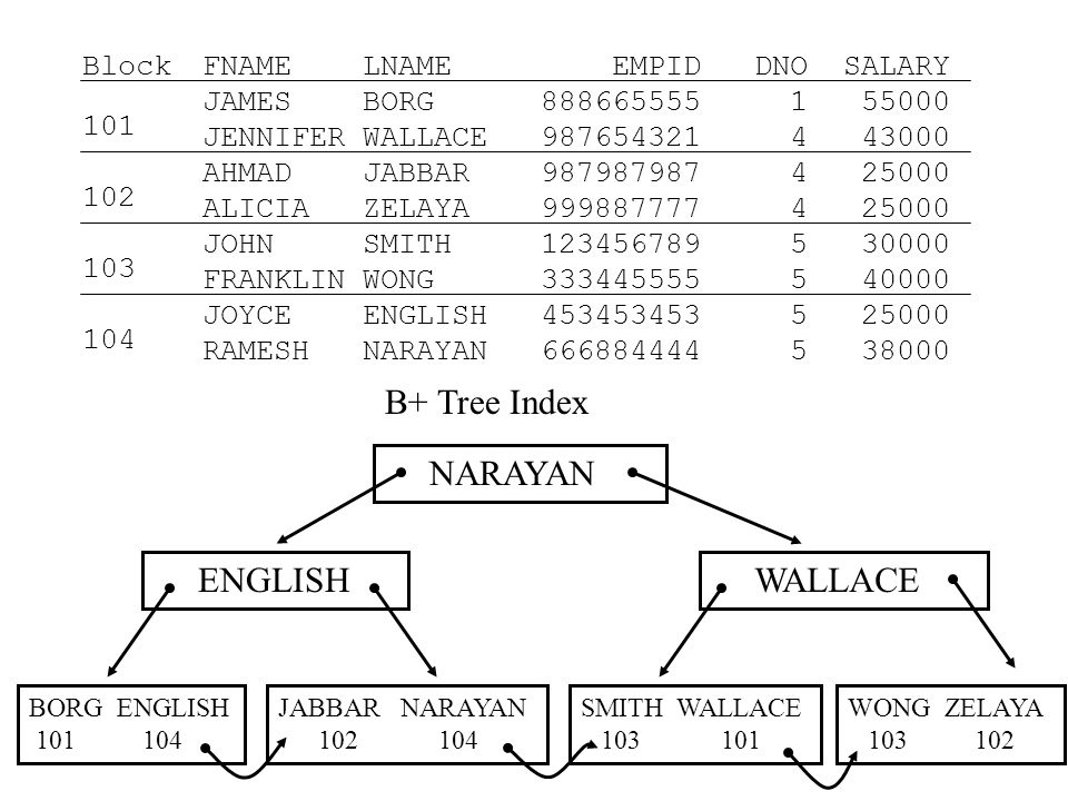 B* Tree Index NARAYAN 104 ENGLISH 104 WALLACE 101 BORG ENGLISH 101 104 JABBAR NARAYAN 102 104 SMITH WALLACE 103 101 WONG ZELAYA 103 102 FNAME LNAME EMPID DNO SALARY JAMES BORG 888665555 1 55000 JENNIFER WALLACE 987654321 4 43000 AHMAD JABBAR 987987987 4 25000 ALICIA ZELAYA 999887777 4 25000 JOHN SMITH 123456789 5 30000 FRANKLIN WONG 333445555 5 40000 JOYCE ENGLISH 453453453 5 25000 RAMESH NARAYAN 666884444 5 38000 Block 101 102 103 104