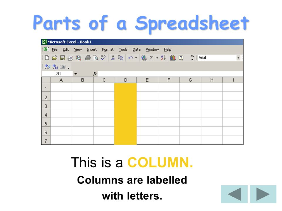What is a Spreadsheet. A spreadsheet is used for storing information and data.