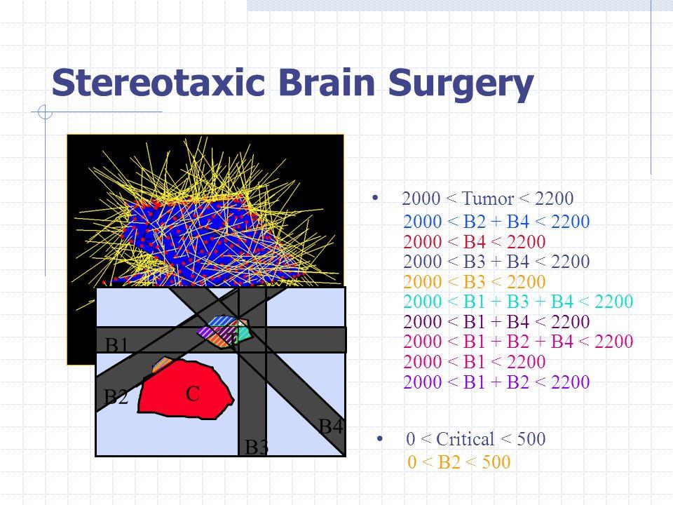 2000 < Tumor < 2200 2000 < B2 + B4 < 2200 2000 < B4 < 2200 2000 < B3 + B4 < 2200 2000 < B3 < 2200 2000 < B1 + B3 + B4 < 2200 2000 < B1 + B4 < 2200 2000 < B1 + B2 + B4 < 2200 2000 < B1 < 2200 2000 < B1 + B2 < 2200 0 < Critical < 500 0 < B2 < 500 T C B1 B2 B3 B4 T