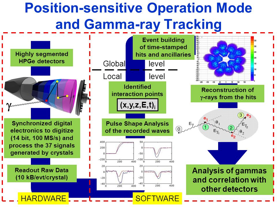 Position-sensitive Operation Mode and Gamma-ray Tracking Pulse Shape Analysis of the recorded waves Highly segmented HPGe detectors Identified interaction points (x,y,z,E,t) i Reconstruction of  -rays from the hits Synchronized digital electronics to digitize (14 bit, 100 MS/s) and process the 37 signals generated by crystals Analysis of gammas and correlation with other detectors          Readout Raw Data (10 kB/evt/crystal) Event building of time-stamped hits and ancillaries Global level Local level HARDWARESOFTWARE