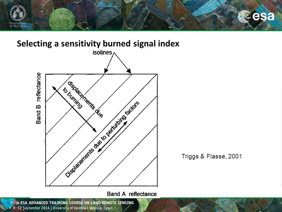 Triggs & Flasse, 2001 Selecting a sensitivity burned signal index