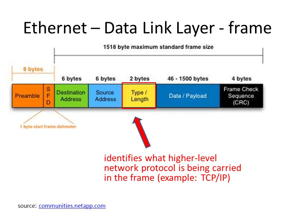 Ethernet – Data Link Layer - frame identifies what higher-level network protocol is being carried in the frame (example: TCP/IP) source: communities.n