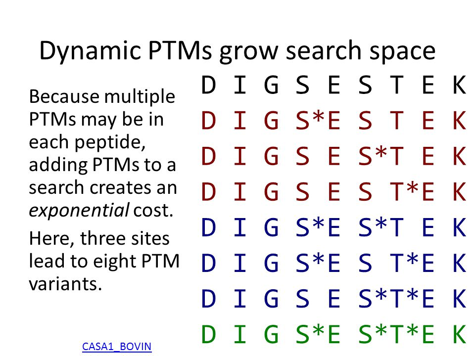 Dynamic PTMs grow search space Because multiple PTMs may be in each peptide, adding PTMs to a search creates an exponential cost.