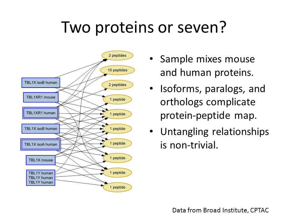 Two proteins or seven. Sample mixes mouse and human proteins.