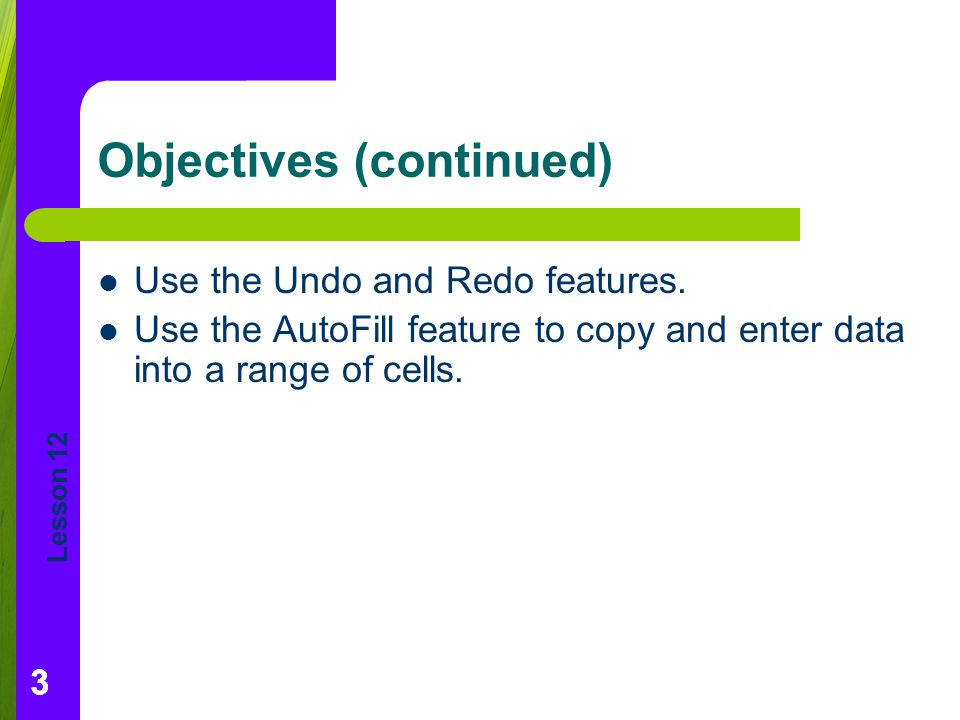 Lesson 12 333 Objectives (continued) Use the Undo and Redo features.