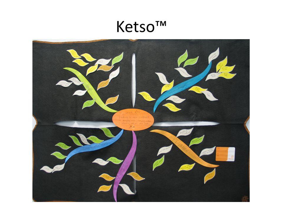 Ketso™