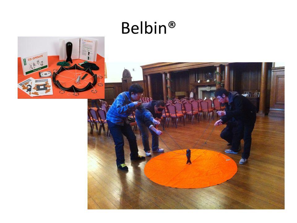 Belbin®
