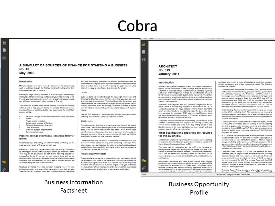 Cobra Business Information Factsheet Business Opportunity Profile