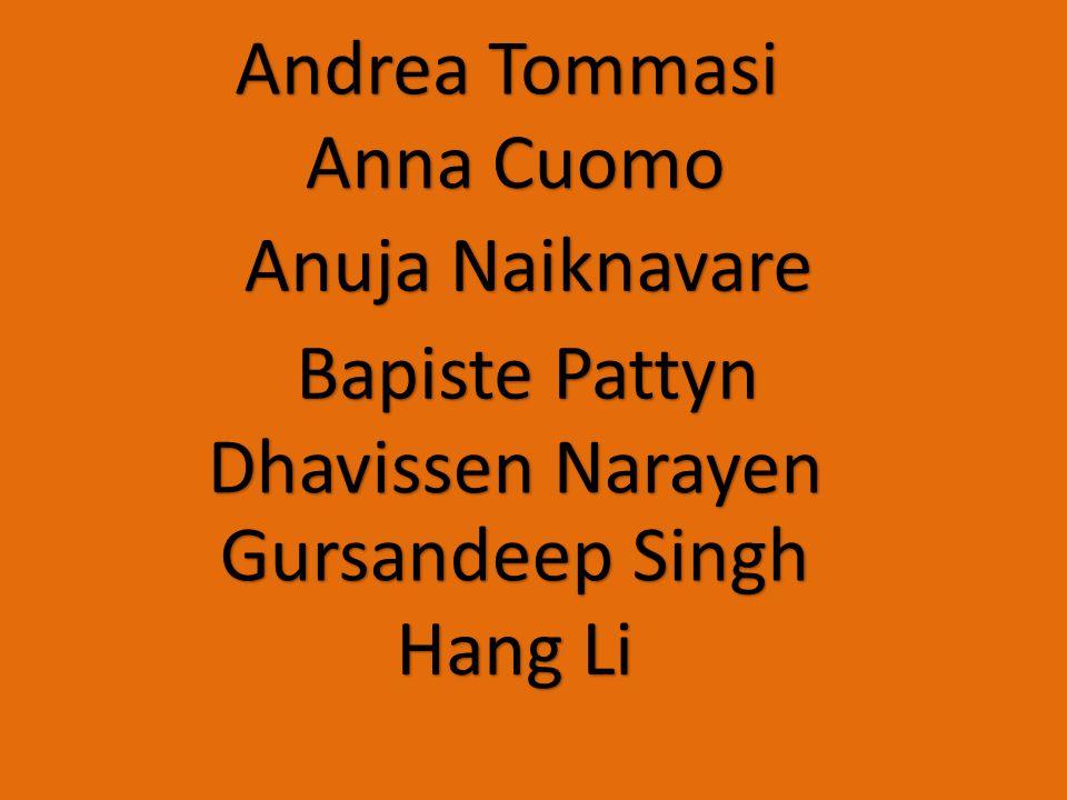 Anna Cuomo Dhavissen Narayen Gursandeep Singh Anuja Naiknavare Hang Li Bapiste Pattyn Andrea Tommasi