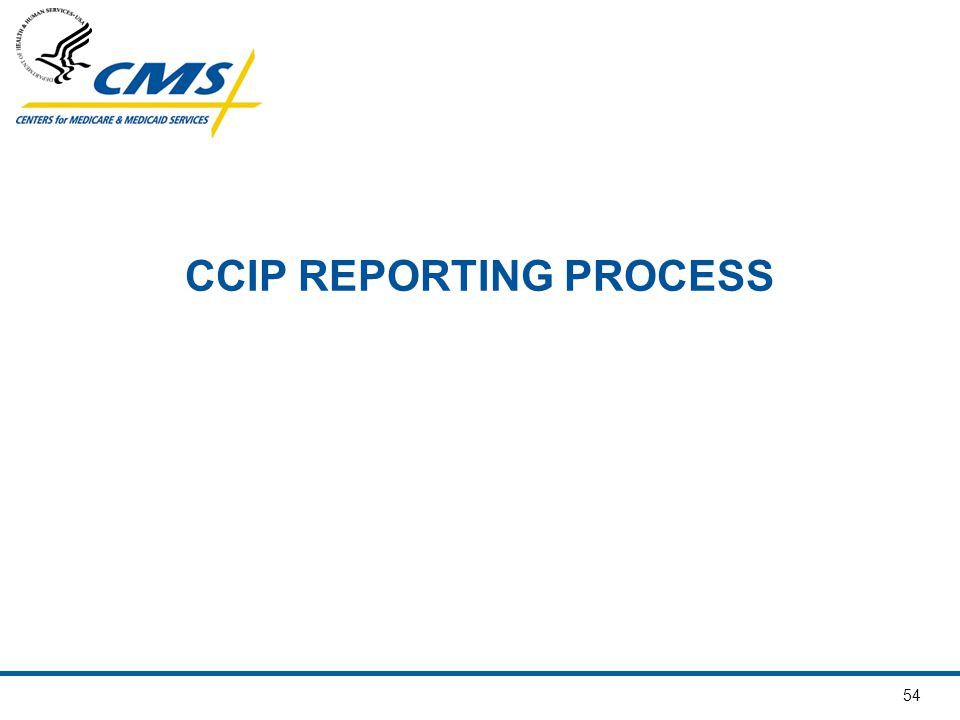 54 CCIP REPORTING PROCESS