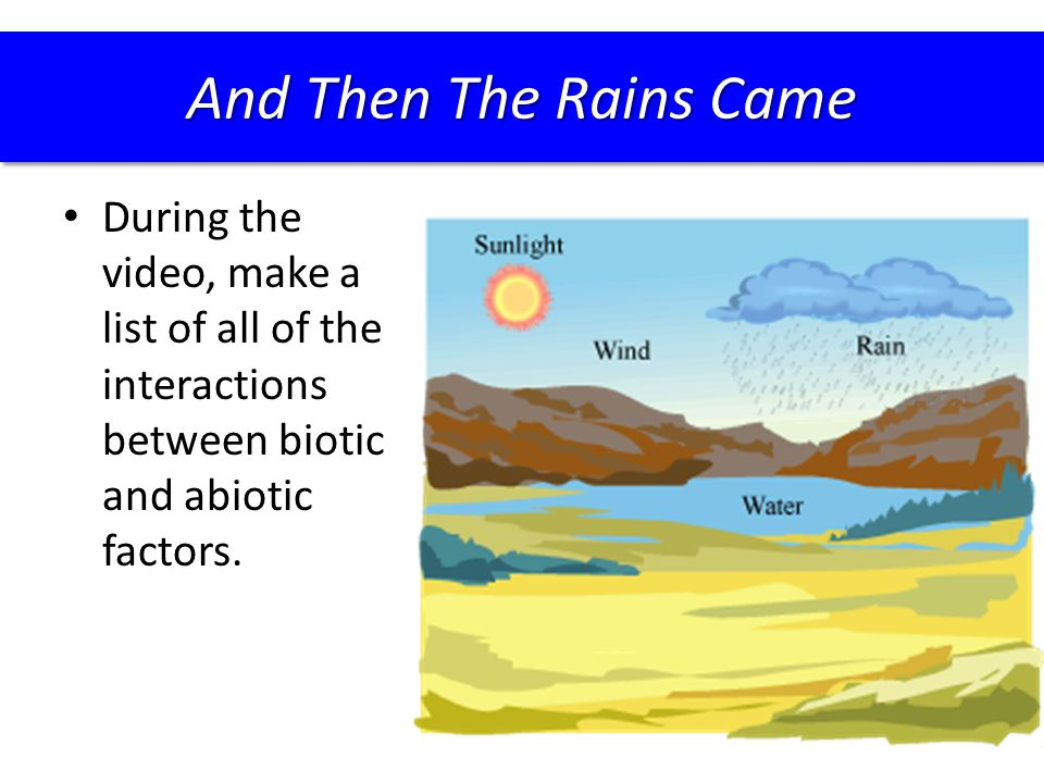 During the video, make a list of all of the interactions between biotic and abiotic factors. And Then The Rains Came