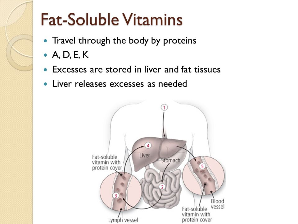 Fat-Soluble Vitamins What They Do: Build Bones – Vitamin A, D, K Protect Vision – Vitamin A Promotes Absorption of Calcium – Vitamin D Protect the Body – Vitamin E (Tocopherol) Blood Clotting – Vitamin K ***Stored in your body for long periods of time; an excess amount of these vitamins can be toxic.