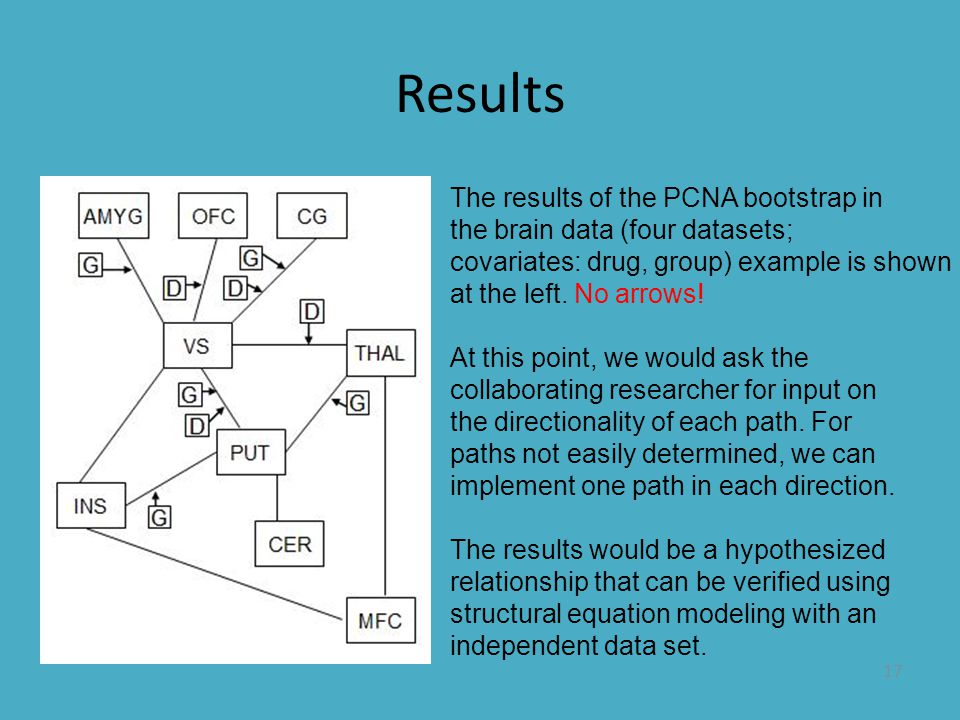 17 Results The results of the PCNA bootstrap in the brain data (four datasets; covariates: drug, group) example is shown at the left. No arrows! At th