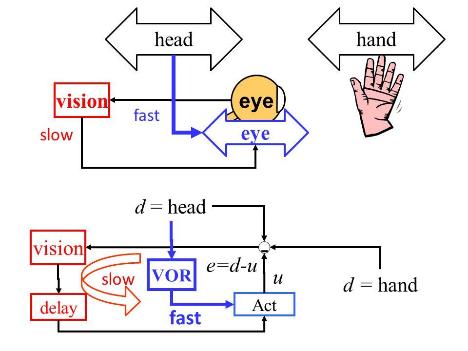 d = hand - vision d = head e=d-u Act u slow delay VOR fast eye headhand vision eye slow fast