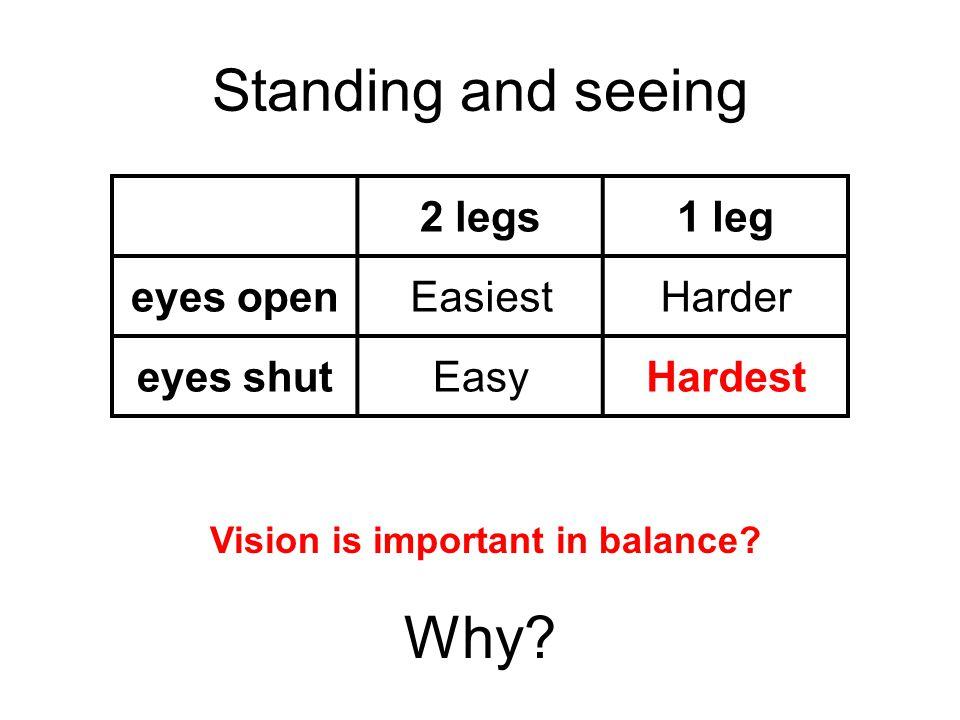 Standing and seeing 2 legs1 leg eyes openEasiestHarder eyes shutEasyHardest Why.