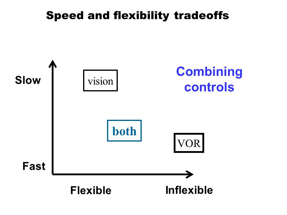 Fast Slow Flexible Inflexible Speed and flexibility tradeoffs both vision VOR Combining controls