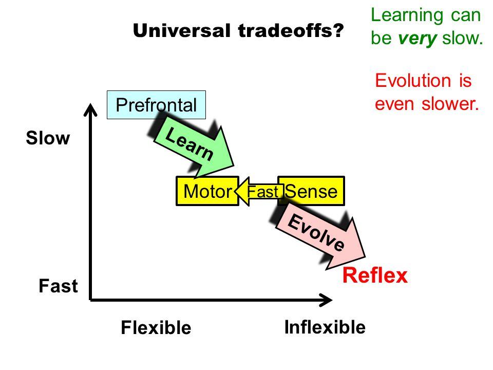 Sense Universal tradeoffs.