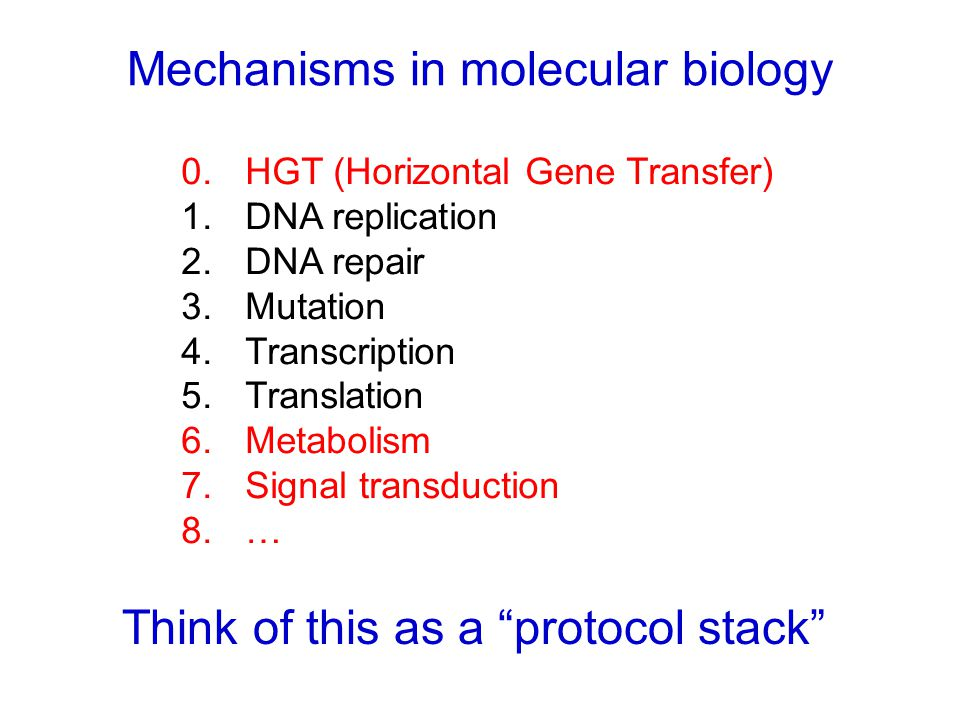 Mechanisms in molecular biology Think of this as a protocol stack 0.HGT (Horizontal Gene Transfer) 1.DNA replication 2.DNA repair 3.Mutation 4.Transcription 5.Translation 6.Metabolism 7.Signal transduction 8.…