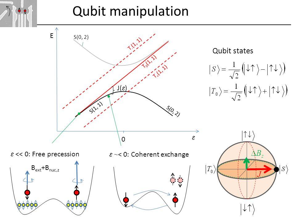 BzBz J Qubit manipulation B ext +B nuc,z  << 0: Free precession  ~ < 0: Coherent exchange S(0, 2) T 0 (1, 1) S(0, 2)  E S(1, 1) T + (1, 1) T - (1