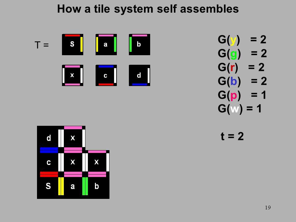 19 How a tile system self assembles T = G(y) = 2 G(g) = 2 G(r) = 2 G(b) = 2 G(p) = 1 G(w) = 1 t = 2