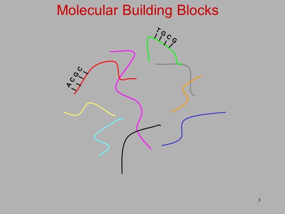 3 A C G C T G C G Molecular Building Blocks
