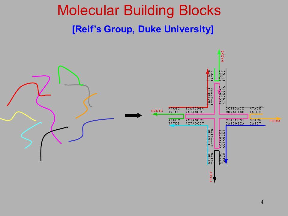 4 [Reif's Group, Duke University]