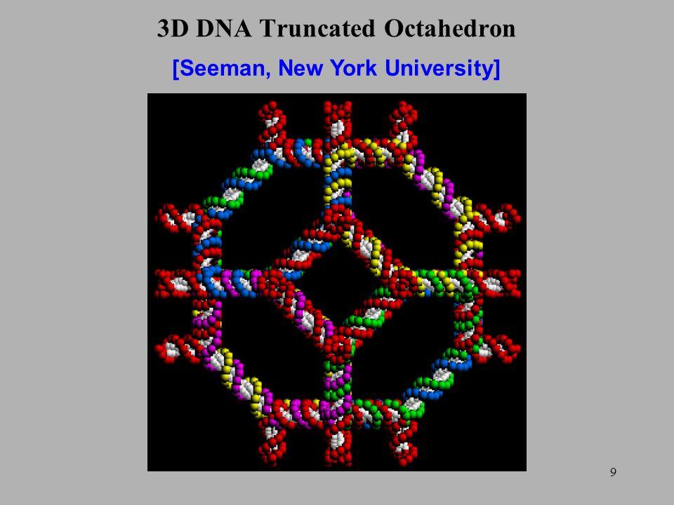 9 3D DNA Truncated Octahedron [Seeman, New York University]