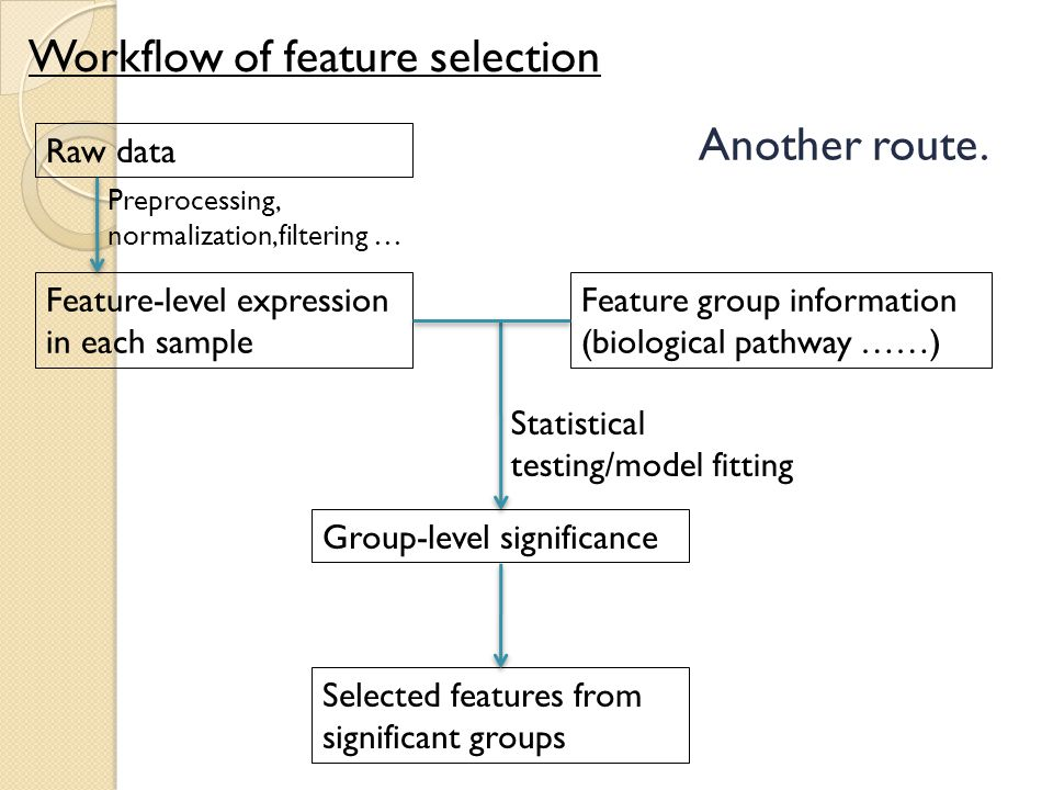 Workflow of feature selection Raw data Feature-level expression in each sample Statistical testing/model fitting Feature group information (biological