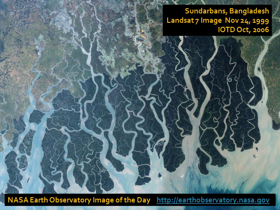 NASA Earth Observatory Image of the Day http://earthobservatory.nasa.govhttp://earthobservatory.nasa.gov Sundarbans, Bangladesh Landsat 7 Image Nov 24