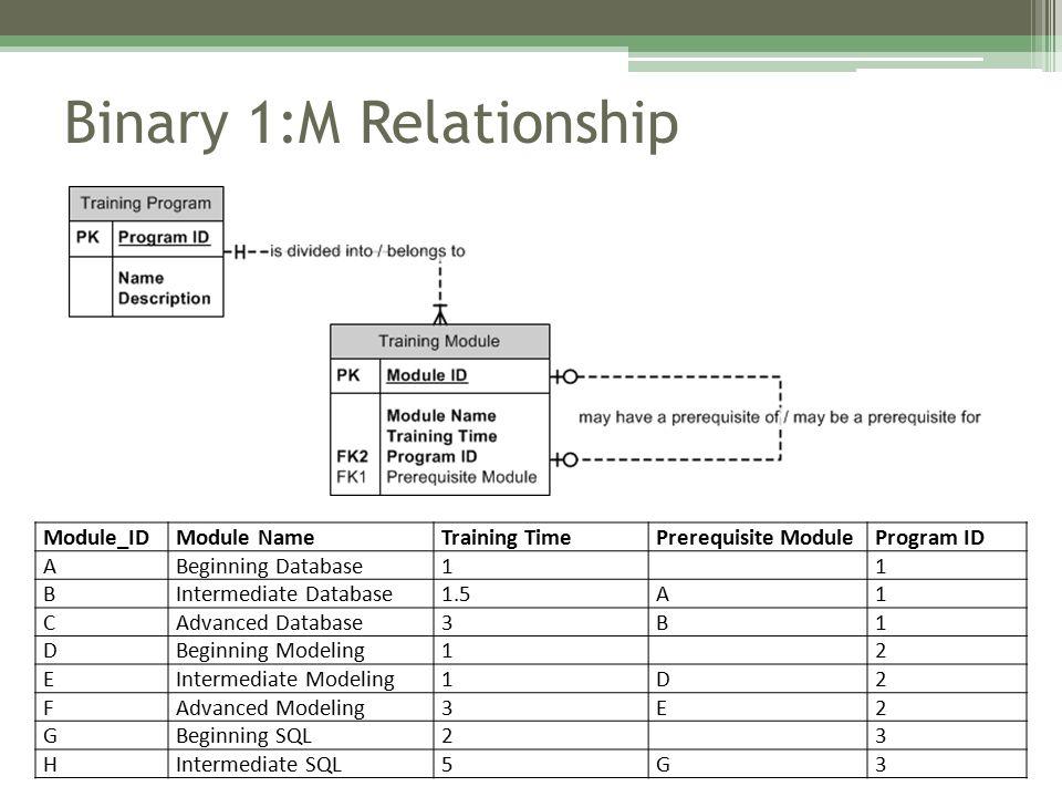 Binary 1:M Relationship Module_IDModule NameTraining TimePrerequisite ModuleProgram ID ABeginning Database11 BIntermediate Database1.5A1 CAdvanced Database3B1 DBeginning Modeling12 EIntermediate Modeling1D2 FAdvanced Modeling3E2 GBeginning SQL23 HIntermediate SQL5G3