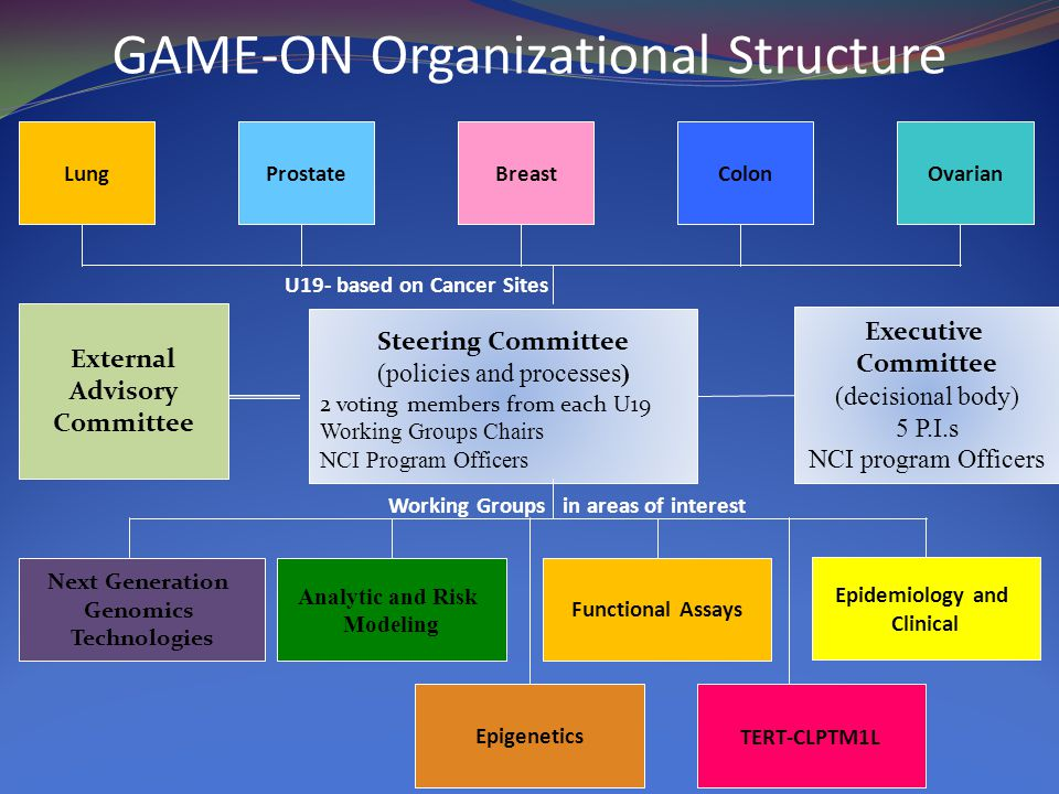 Steering Committee (policies and processes) 2 voting members from each U19 Working Groups Chairs NCI Program Officers Next Generation Genomics Technologies Analytic and Risk Modeling Functional Assays Epidemiology and Clinical External Advisory Committee LungProstateBreastColonOvarian Working Groups in areas of interest U19- based on Cancer Sites GAME-ON Organizational Structure Executive Committee (decisional body) 5 P.I.s NCI program Officers EpigeneticsTERT-CLPTM1L