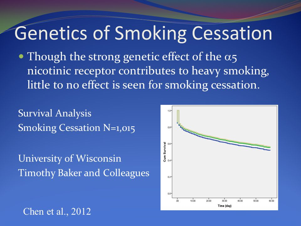 Genetics of Smoking Cessation Though the strong genetic effect of the  5 nicotinic receptor contributes to heavy smoking, little to no effect is seen for smoking cessation.