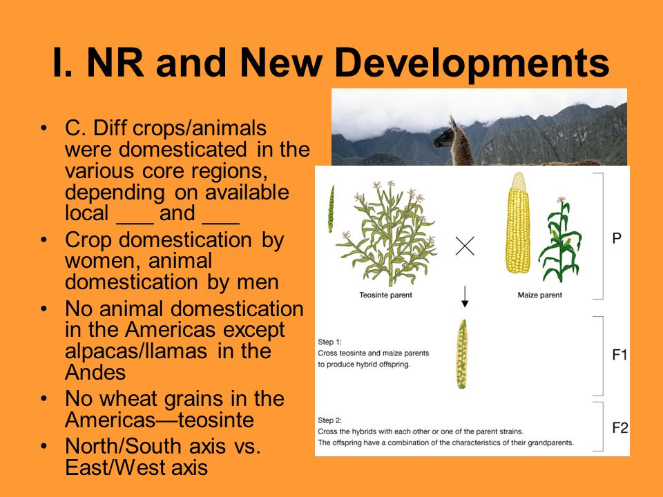 I. NR and New Developments C. Diff crops/animals were domesticated in the various core regions, depending on available local ___ and ___ Crop domestic