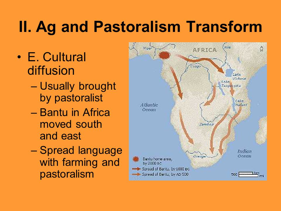 II. Ag and Pastoralism Transform E. Cultural diffusion –Usually brought by pastoralist –Bantu in Africa moved south and east –Spread language with far
