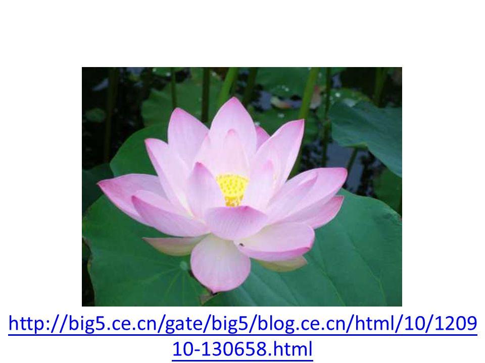 http://big5.ce.cn/gate/big5/blog.ce.cn/html/10/1209 10-130658.html