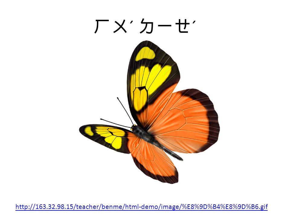 ㄏㄨ ˊ ㄉㄧㄝ ˊ http://163.32.98.15/teacher/benme/html-demo/image/%E8%9D%B4%E8%9D%B6.gif