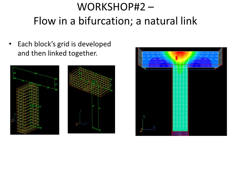 WORKSHOP#2 – Flow in a bifurcation; a natural link Each block's grid is developed and then linked together.