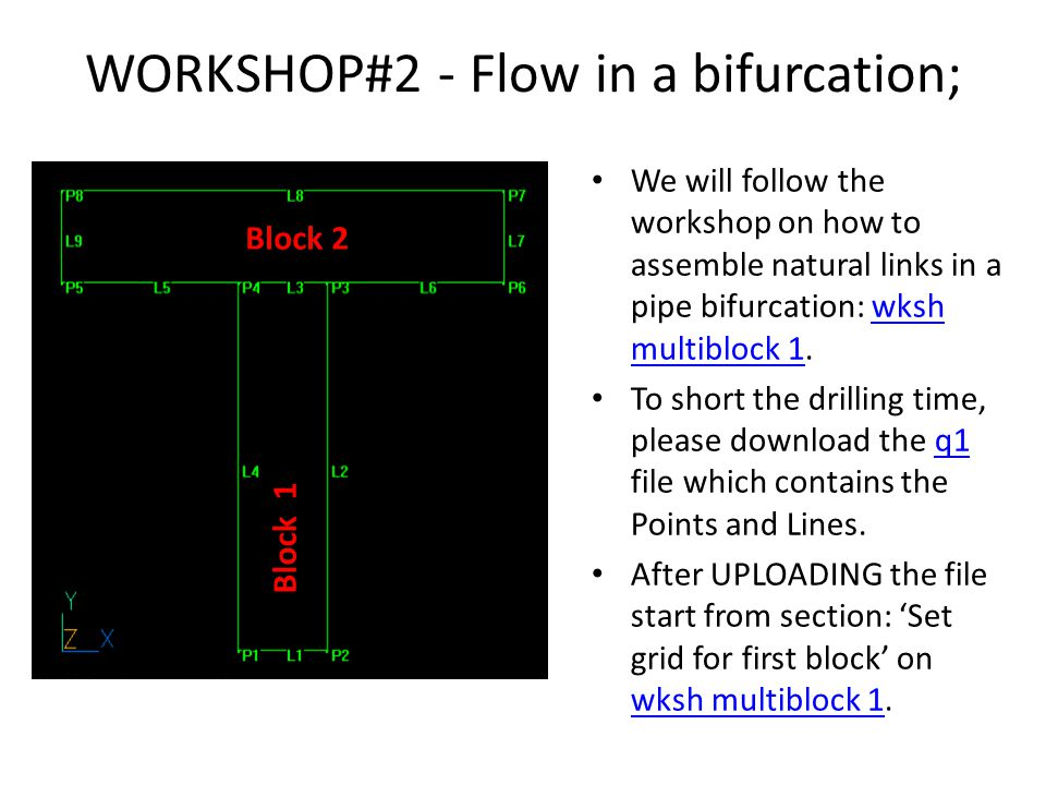 WORKSHOP#2 - Flow in a bifurcation; We will follow the workshop on how to assemble natural links in a pipe bifurcation: wksh multiblock 1.wksh multiblock 1 To short the drilling time, please download the q1 file which contains the Points and Lines.q1 After UPLOADING the file start from section: 'Set grid for first block' on wksh multiblock 1.