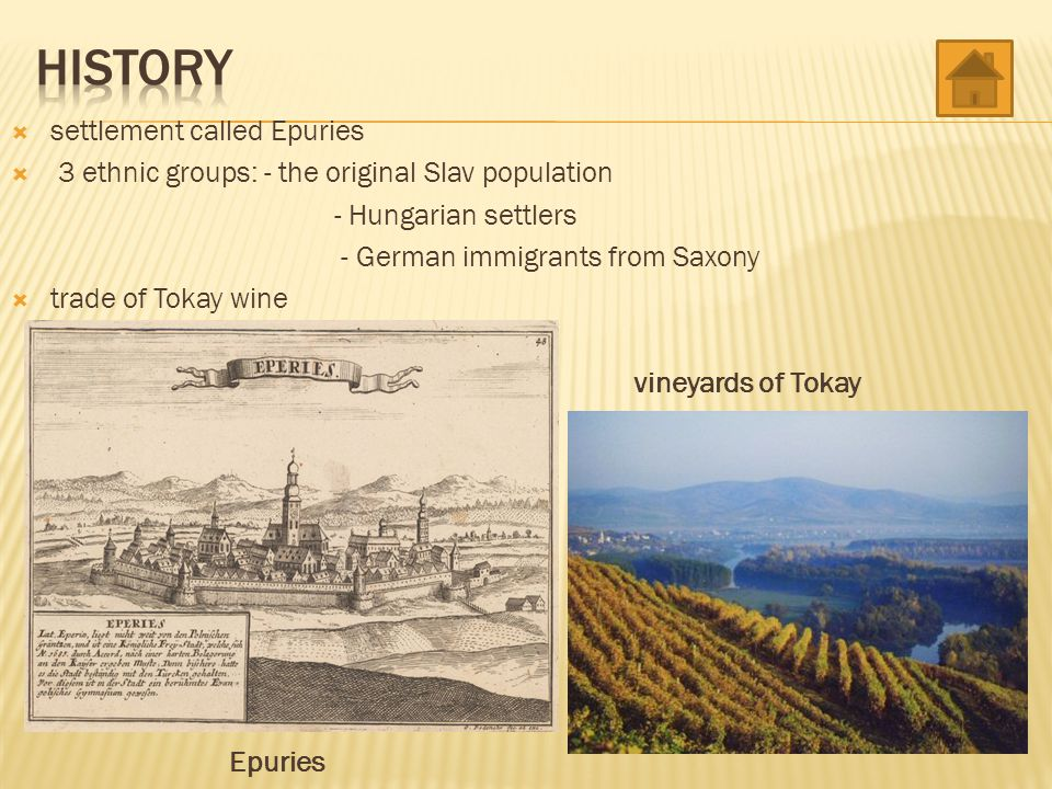  settlement called Epuries  3 ethnic groups: - the original Slav population - Hungarian settlers - German immigrants from Saxony  trade of Tokay wi