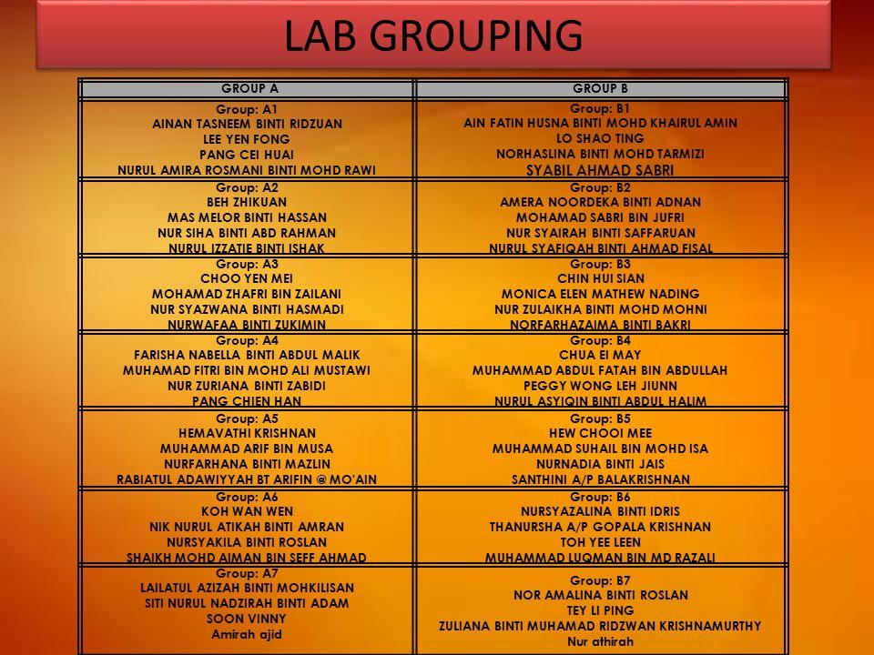 LAB GROUPING GROUP AGROUP B Group: A1 AINAN TASNEEM BINTI RIDZUAN LEE YEN FONG PANG CEI HUAI NURUL AMIRA ROSMANI BINTI MOHD RAWI Group: B1 AIN FATIN H