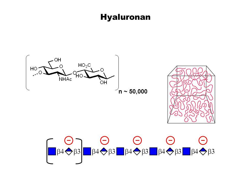 Hyaluronan n ~ 50,000 