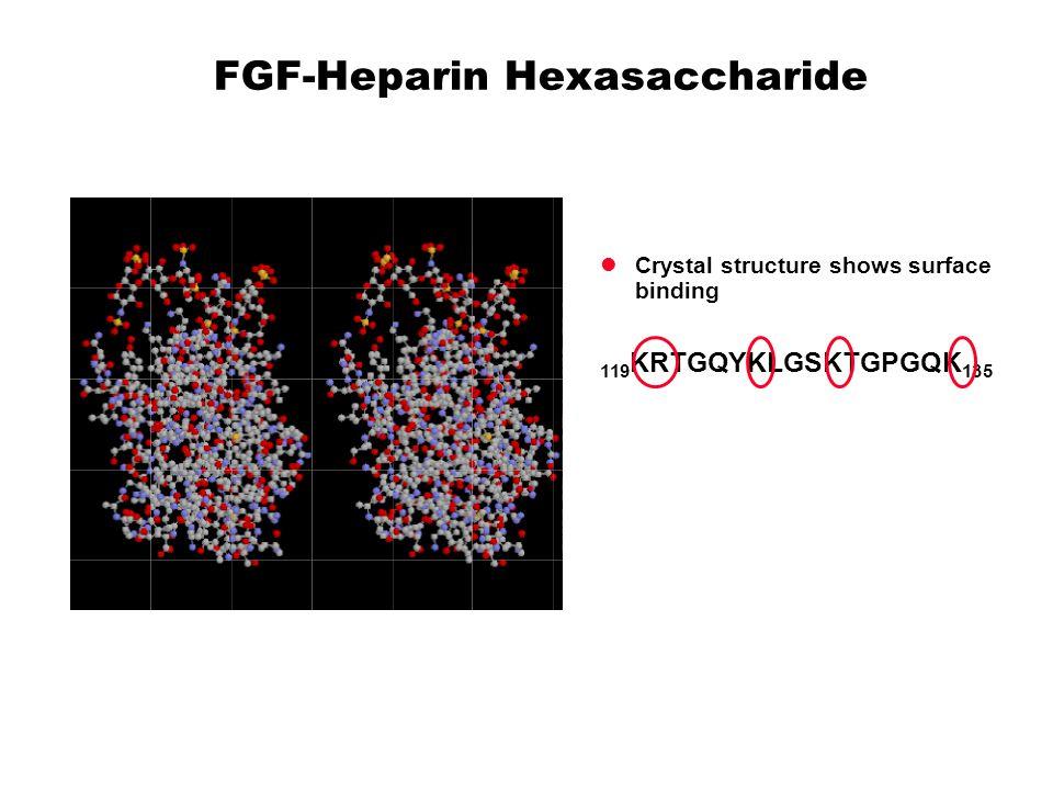 FGF-Heparin Hexasaccharide Crystal structure shows surface binding 119 KRTGQYKLGSKTGPGQK 135
